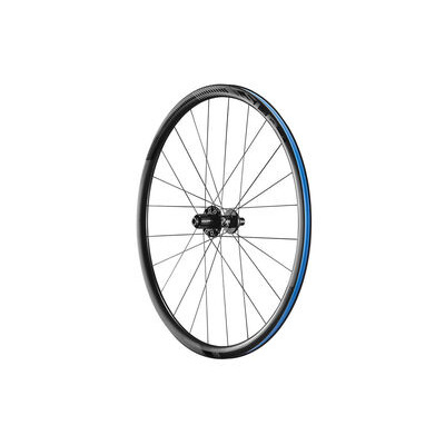 GIANT SLR0 Disc Climbing Rear Wheel