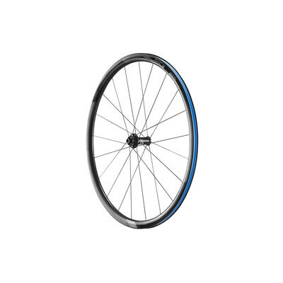 GIANT SLR1 Disc Climbing Front Wheel
