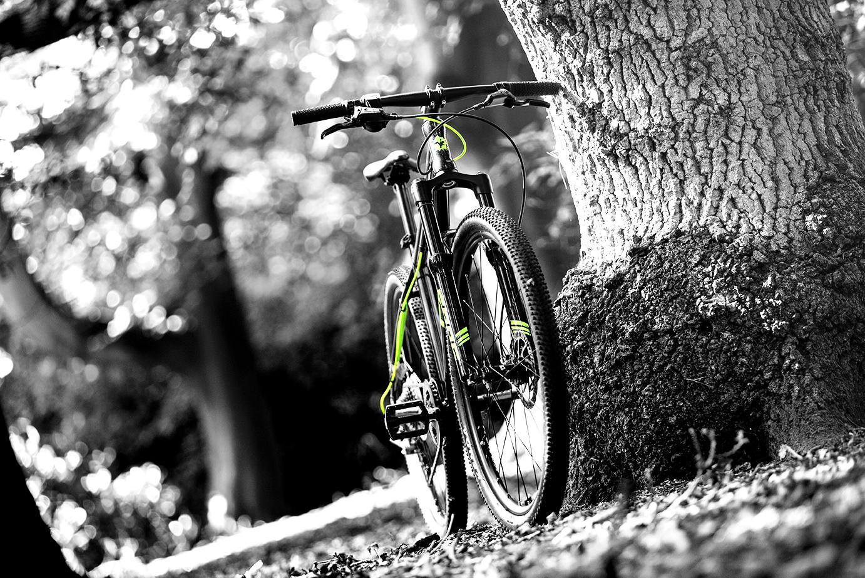 01a7de376 Frog s new lightweight kids  Mountain Bike range    Cyclesense News ...