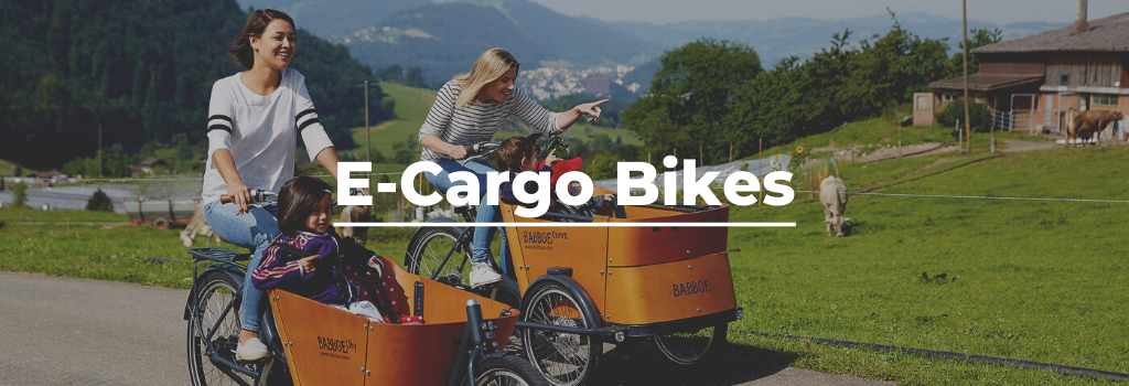 Electric cargo bikes & trikes in Yorkshire